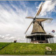 2016 Netherlands